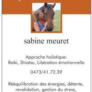 Sabine meuret-travail énergétique pour les animaux