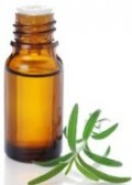 La trousse de secours aux huiles essentielles