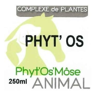 Phyt'bone