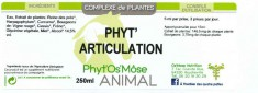 Phyt'articulation animal