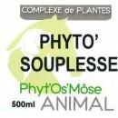 Phyto'flexibility