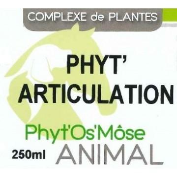 Phyt'articulation animal