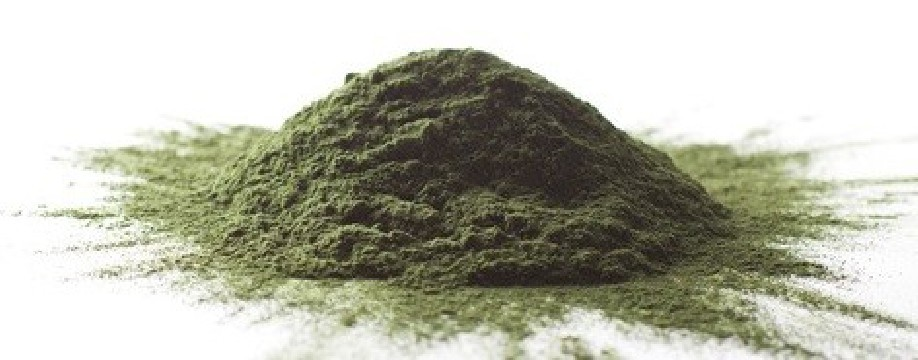 https://www.horseremedy.eu/478-thickbox/spirulina.jpg
