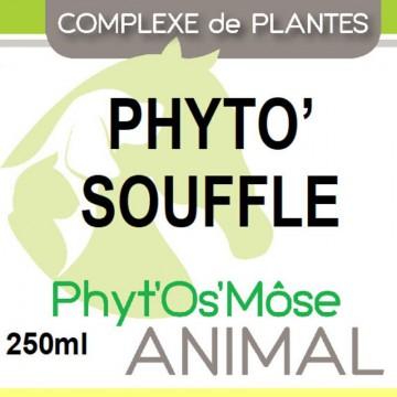 https://www.horseremedy.eu/628-thickbox/phyto-souffle.jpg