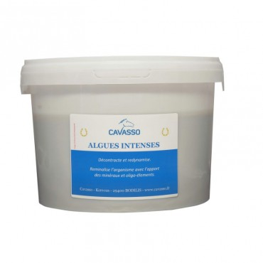 Intense Premium Seaweeds 2,5 Kg