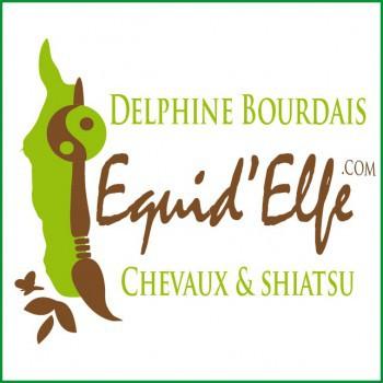 Praticien Cavasso - Horse Remedy - Delphine Bourdais