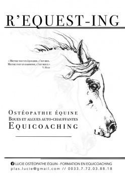 Praticien Cavasso - Lucie Ostéopathe équin - Formation en equicoaching